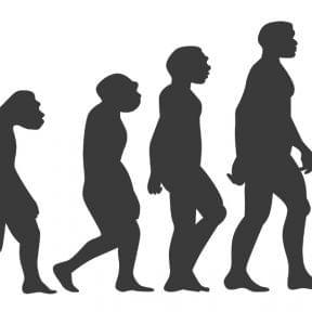行政書士のコンサルタント化|代書屋からの進化